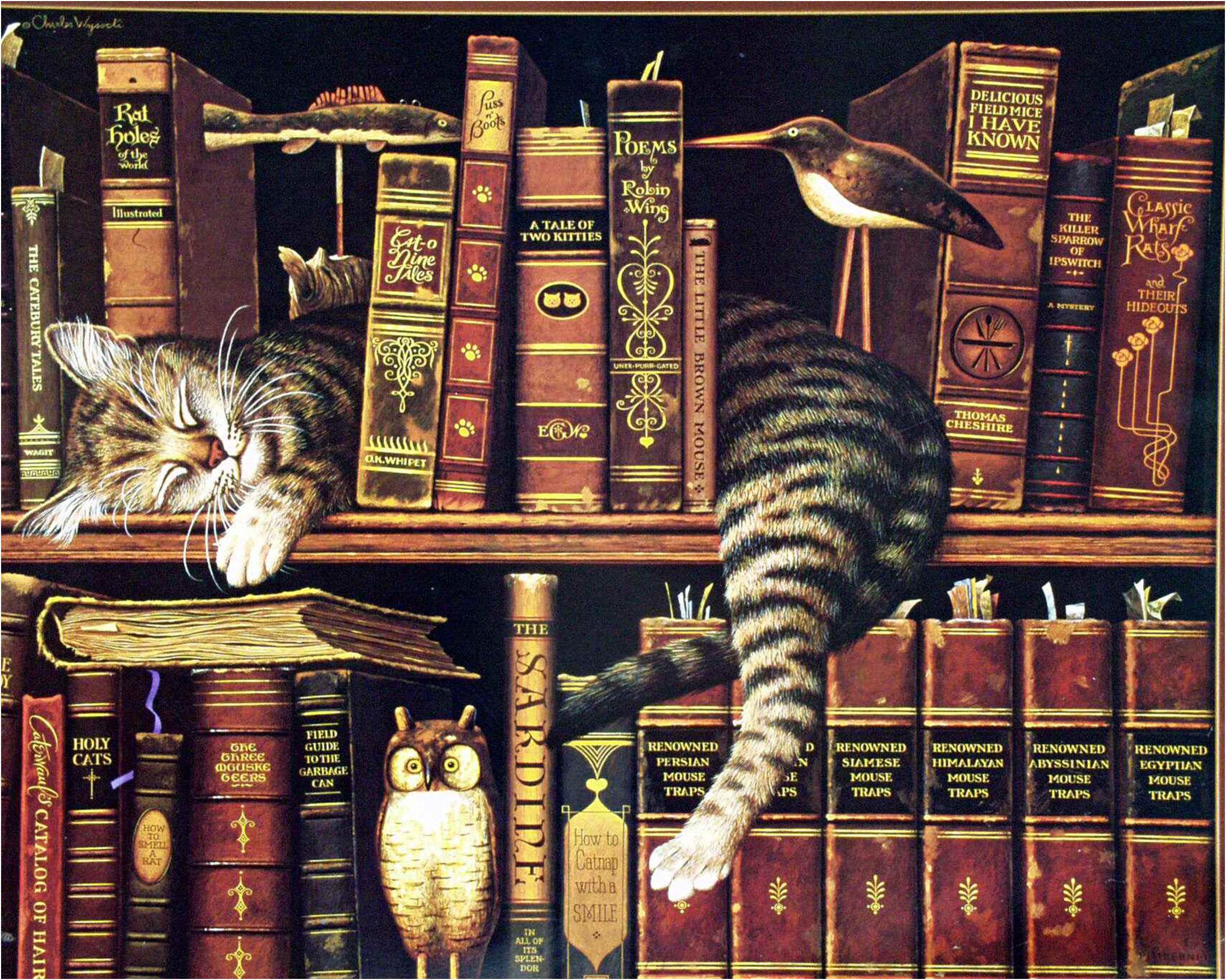 Timeline Buchhandlung